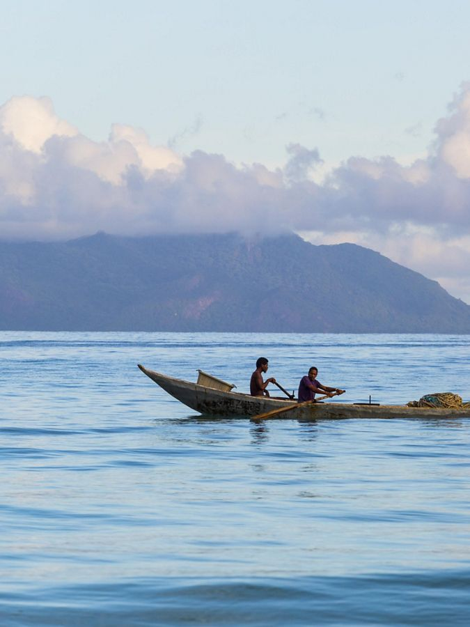 Two people rowing a canoe with island in background.