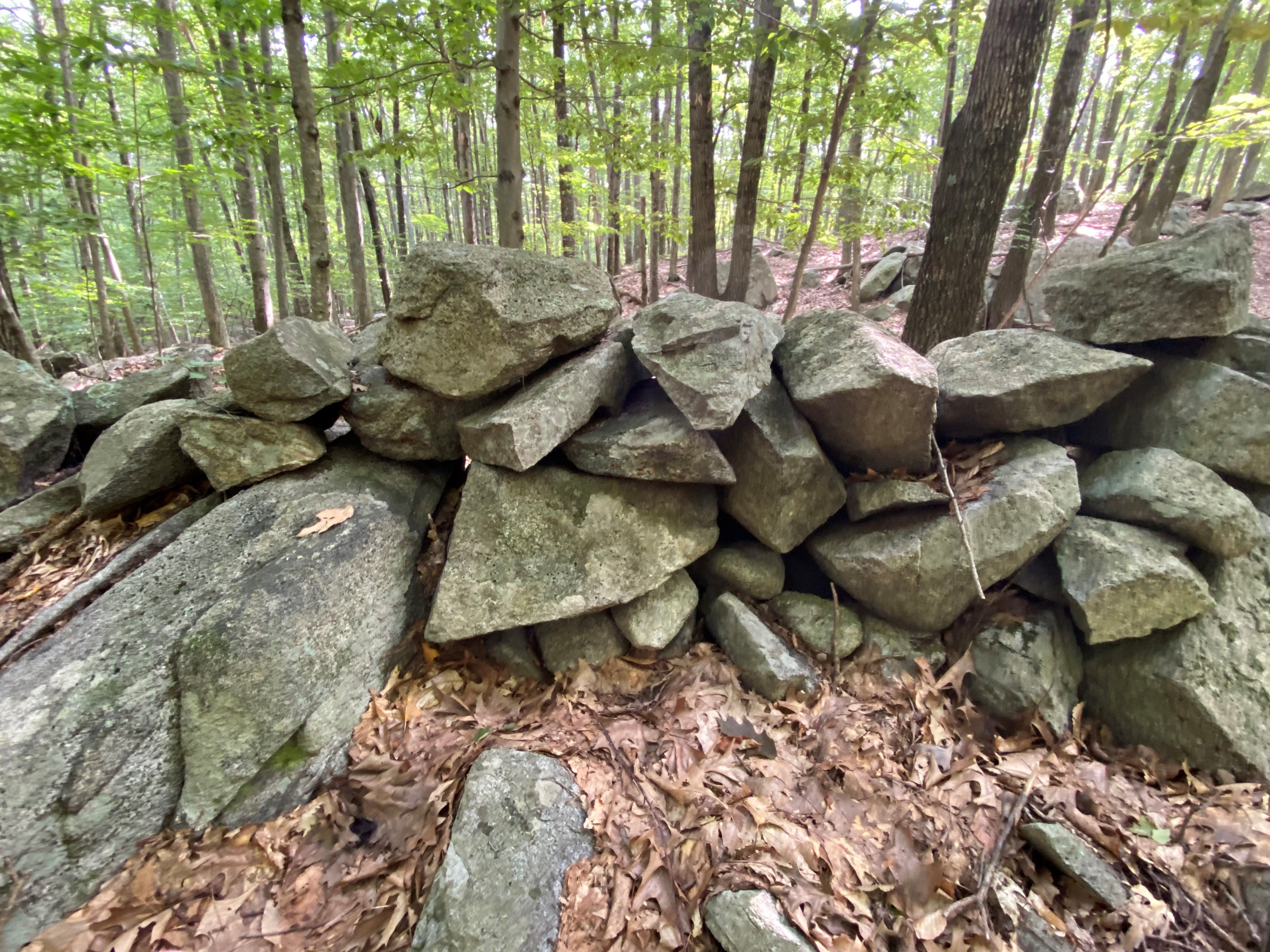 A low, loose wall of irregular rocks, with open woods behind it.