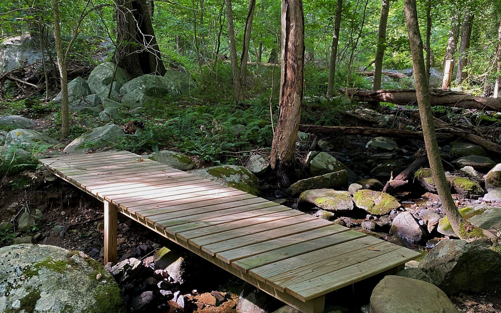 A short wooden footbridge crosses a dry streambed, as seen from above.
