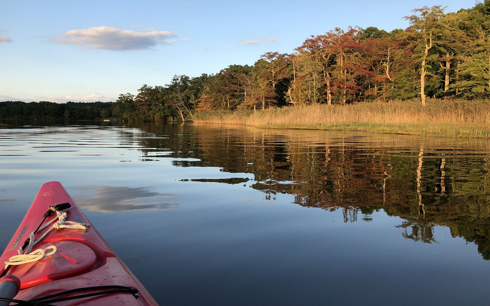 Looking across the bow of a red kayak gliding through calm waters, with forested shoreline in the background.