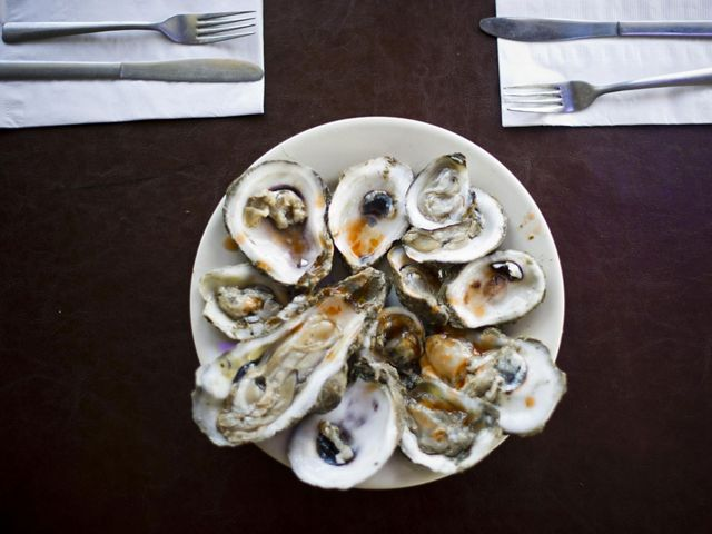 A plate full of oysters on the halfshell, viewed from directly above.