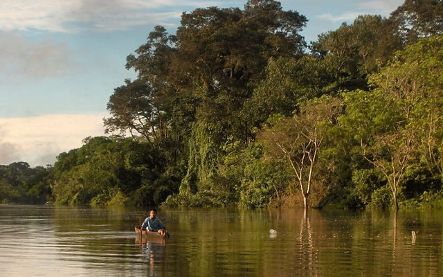 A young boy paddles his dugout canoe to school on the Yarapa River, a tributary of the Amazon in northeastern Peru.