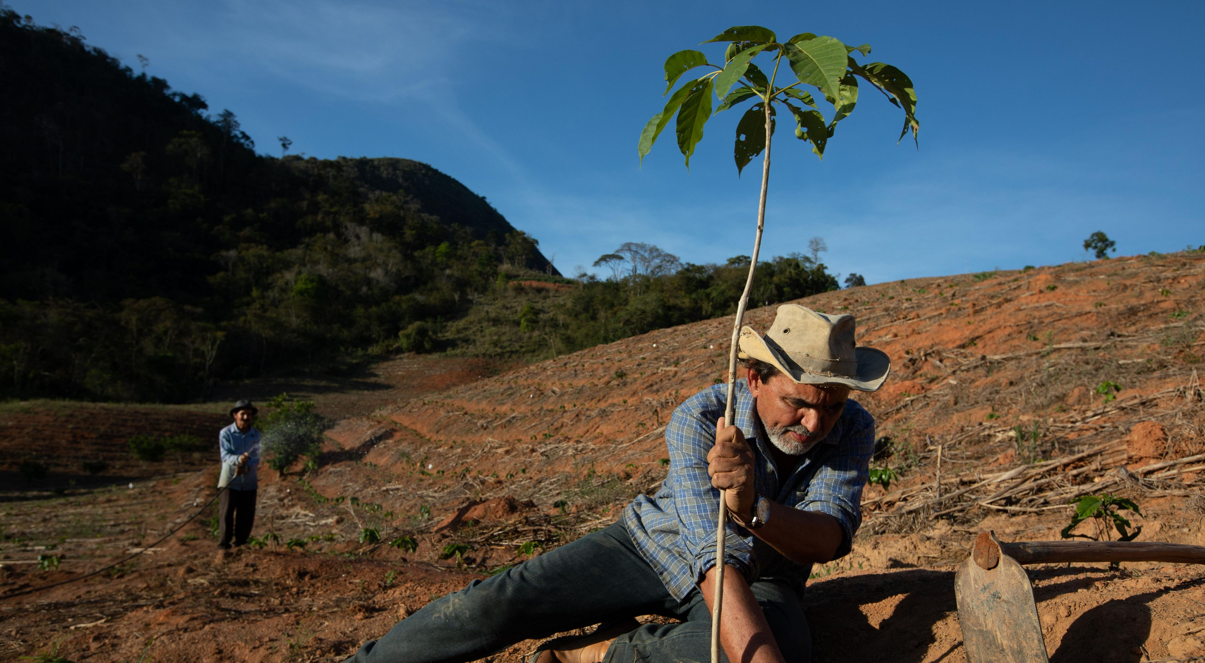 Adolfo Littiga planting a native tree on the farm he also grew up on. Adolfo develops agroforestry systems as part of the Reflorestar program.