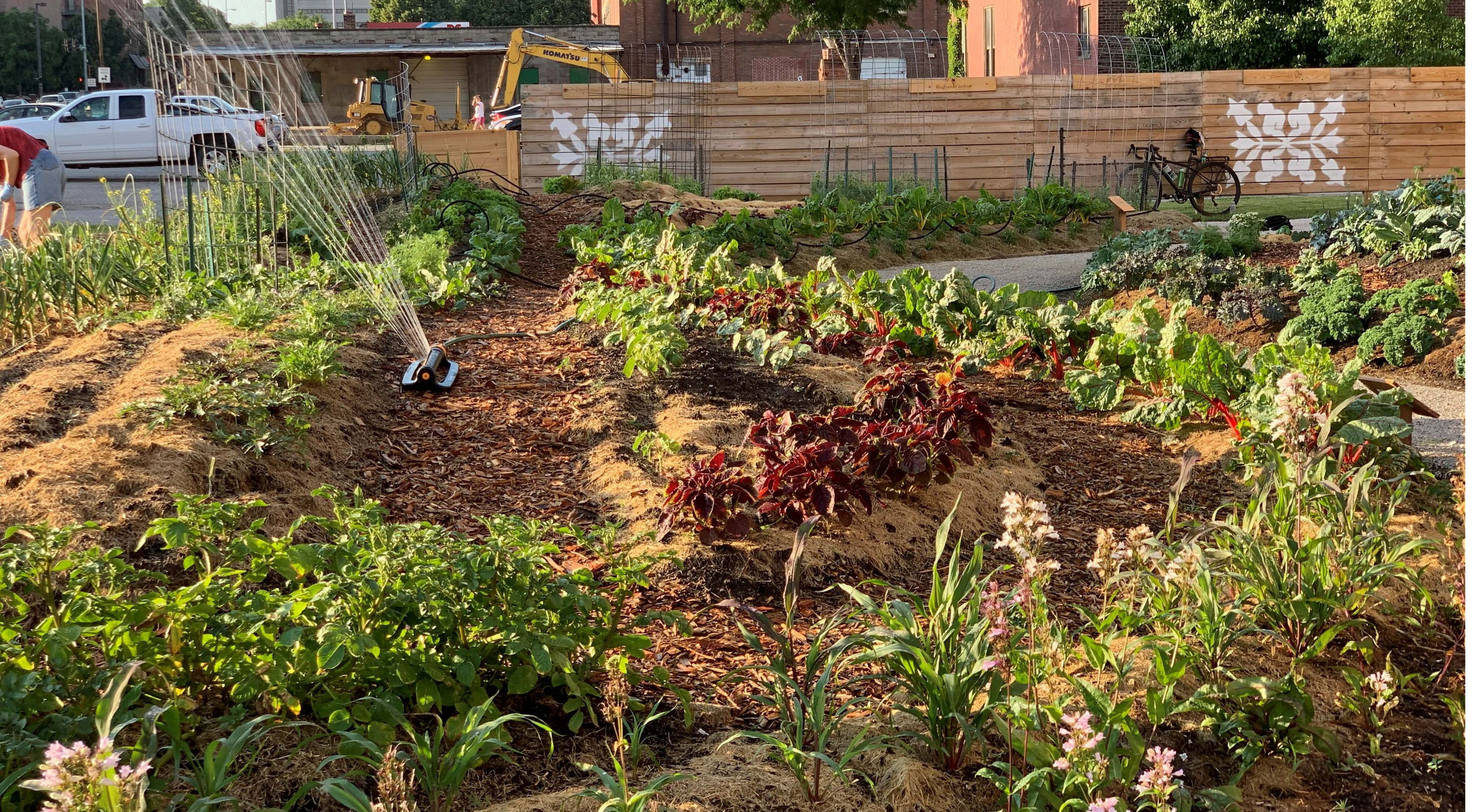 Raised plot containing vegetables, herbs, and flowers