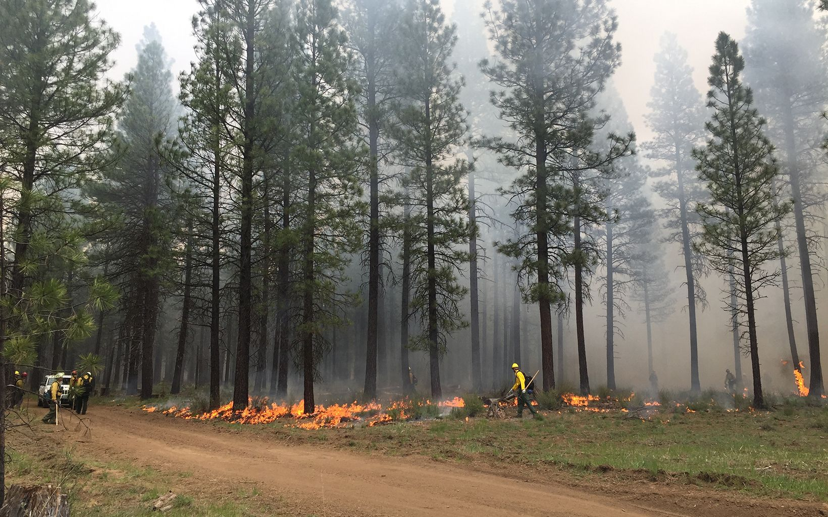 Central-Oregon-Prescribed-Fire