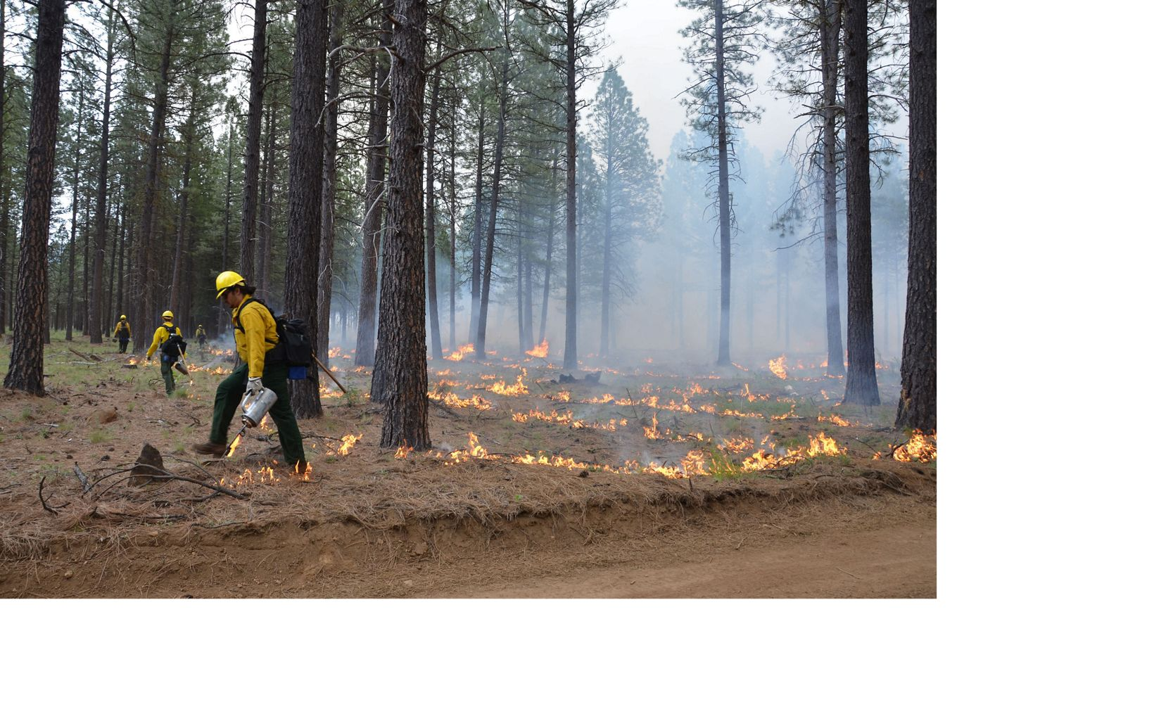 Prescribed fire staff Oregon