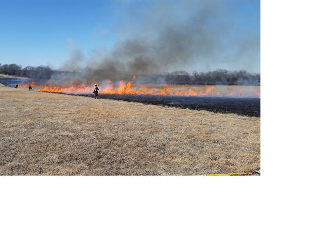 Staff conducting a controlled burn on Goodnight-Henry preserve.