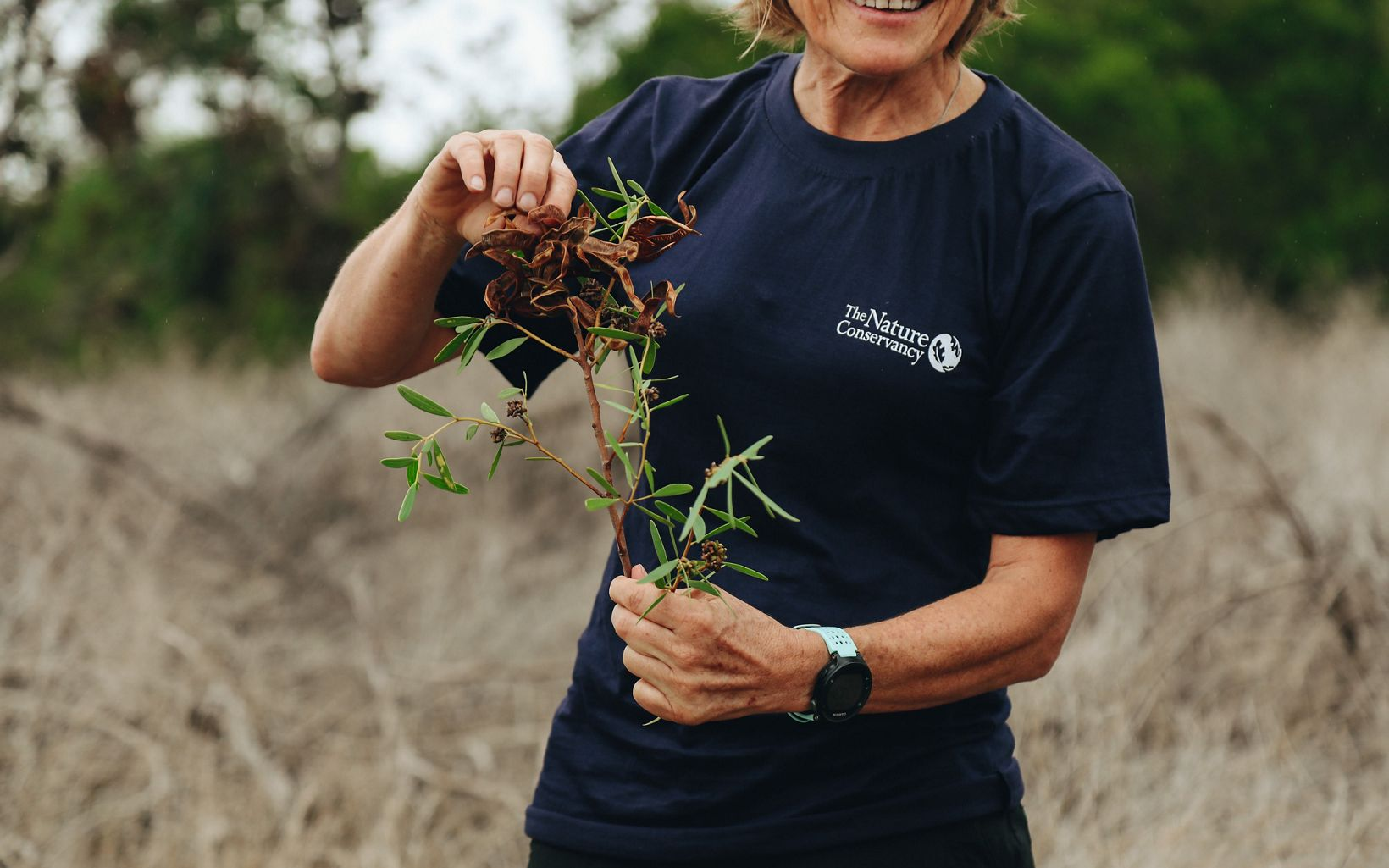 Clearing invasive plants