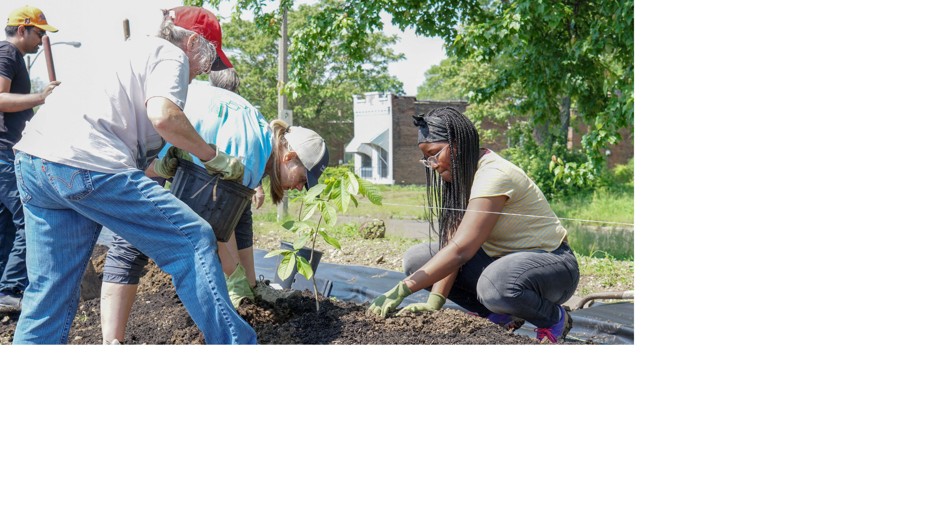Small group of people planting trees in an urban garden.