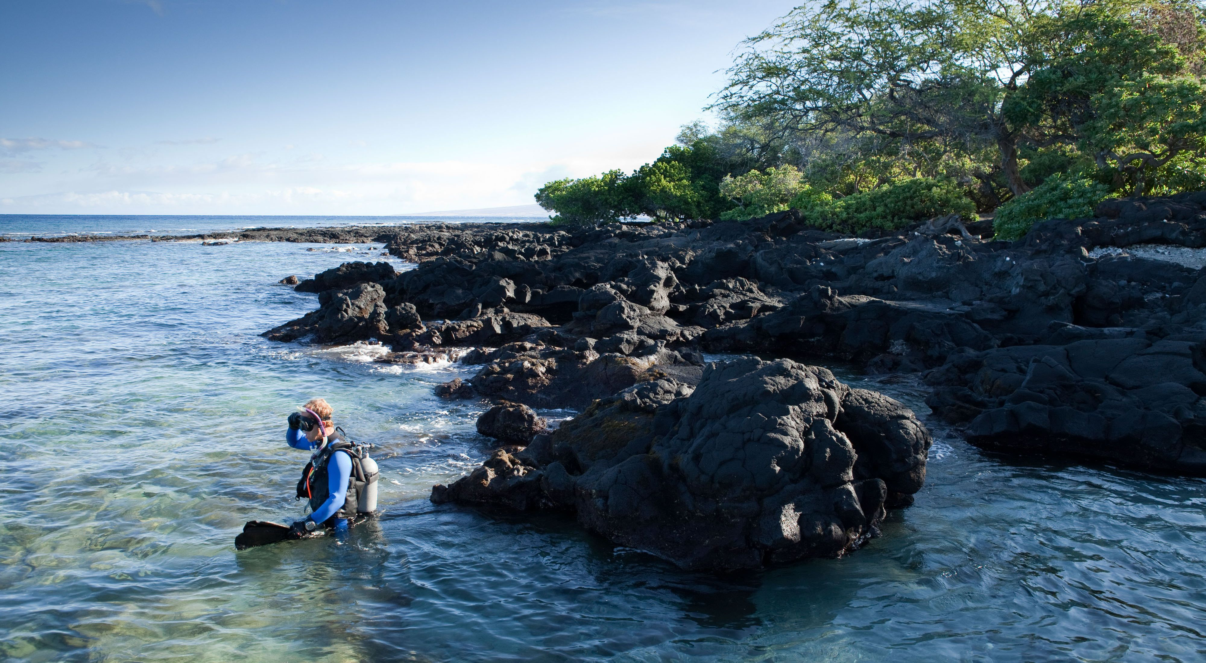 A diver entering the water from a rocky shore.