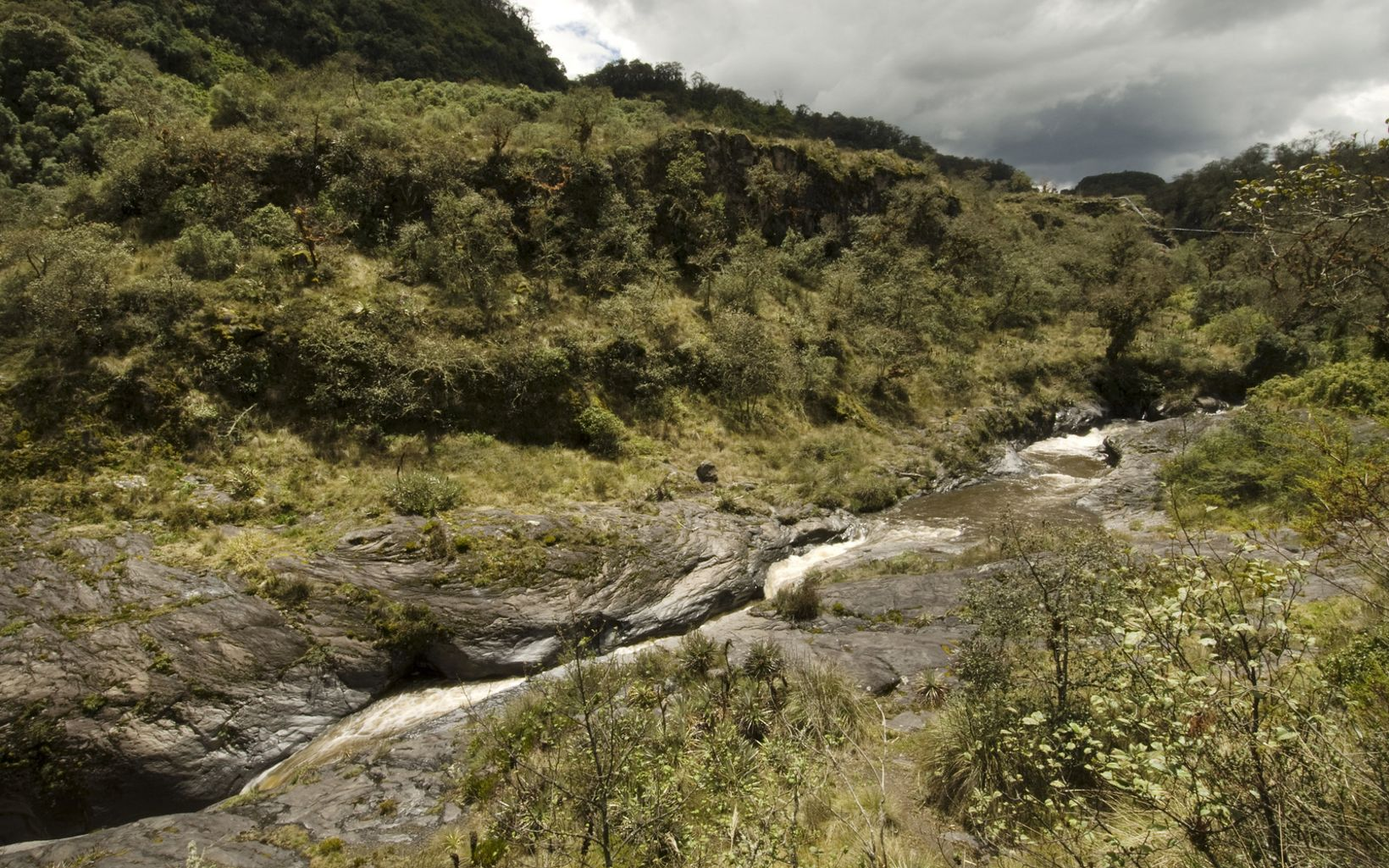 Pita River (a major water source for Quito, capital of Ecuador) flowing through the Cotopaxi National Park buffer zone at Hacienda Santa Rita, a ecotourism resort and associated private ecological reserve In the Andean highlands of Ecuador. The Nature Conservancy partners with Fundacion Paramo, an non-profit organization of private landowners living in the buffer zone. Fundacion Paramo supports private lands conservation around the national park, including the Santa Rita private reserve.  PHOTO CREDIT: ©Bridget Besaw