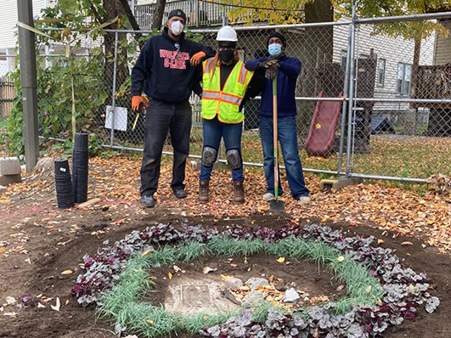 Three people stand in a dirt yard in front of a circle of newly-planted shrubs.