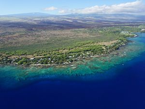 Aerial view of reef at Puakō, Hawaii.