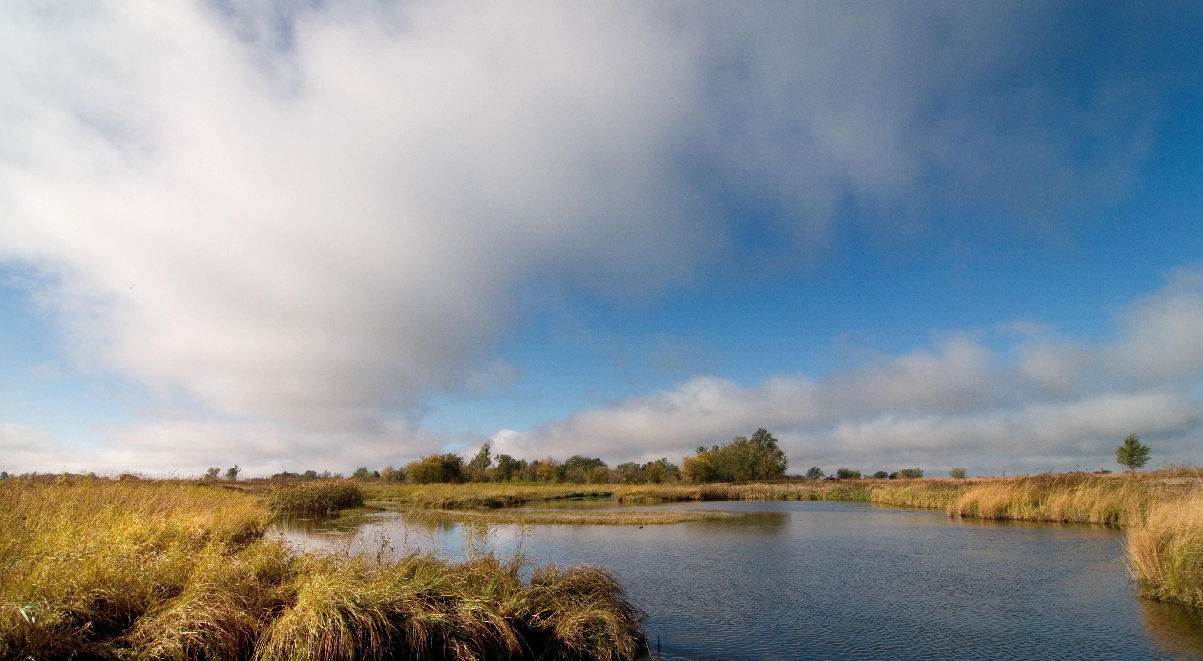 wetland area along the Platte River basin in Nebraska.