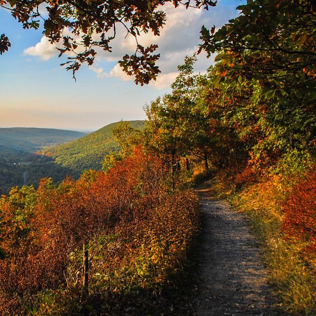 Trail in New York.