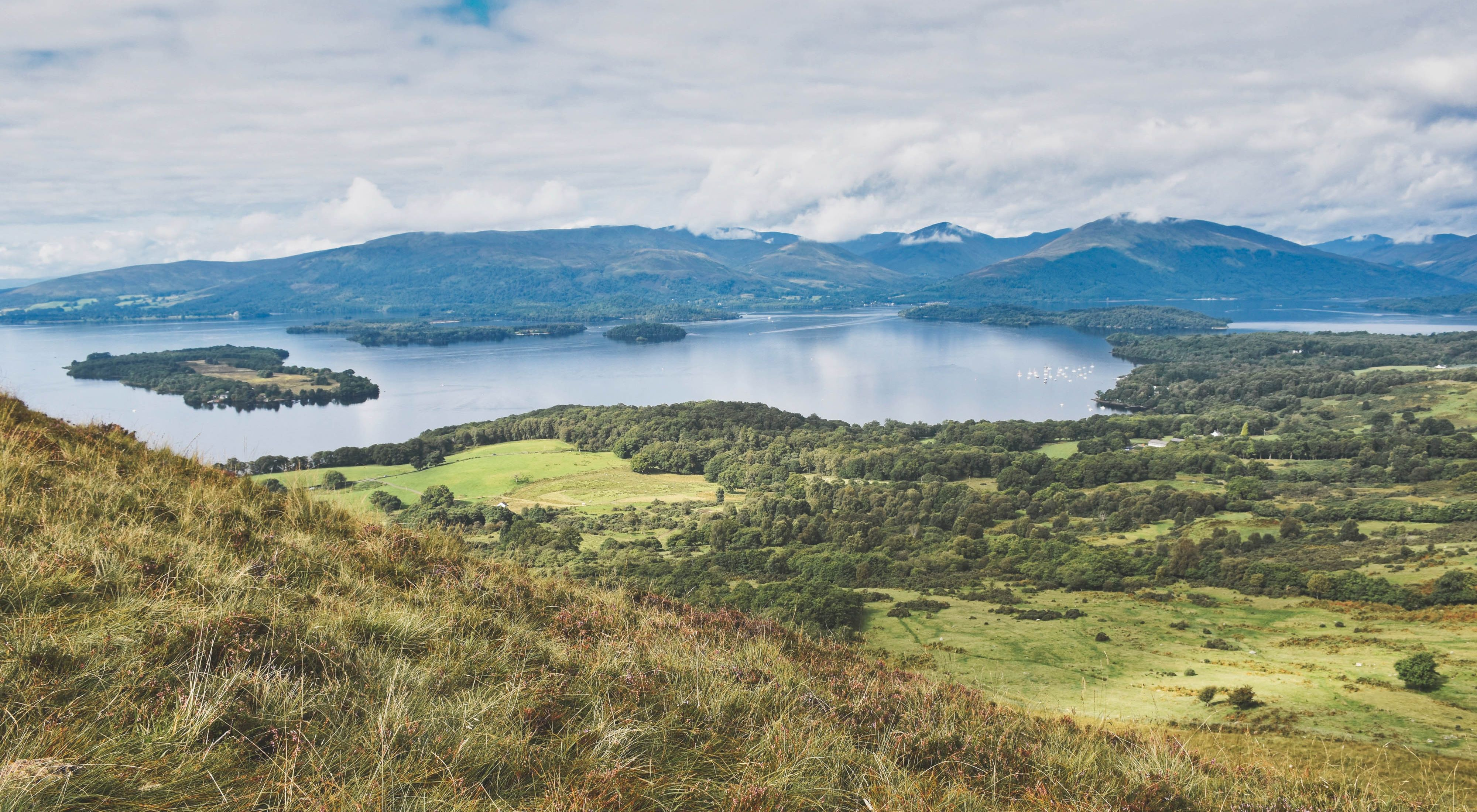 Oak woodlands and rolling hills of Scotland's Loch Lomond.