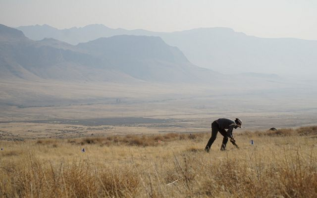 A scientist plants native plant seeds in the ground to help restore the Sagebrush Sea.