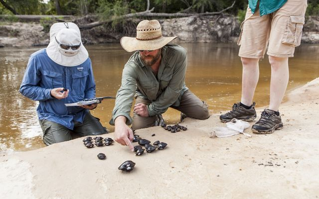 Three people along the shore of a stream at Roy E. Larsen Sandyland Preserve looking at and recording data on freshwater mussels that are lined up on the ground.