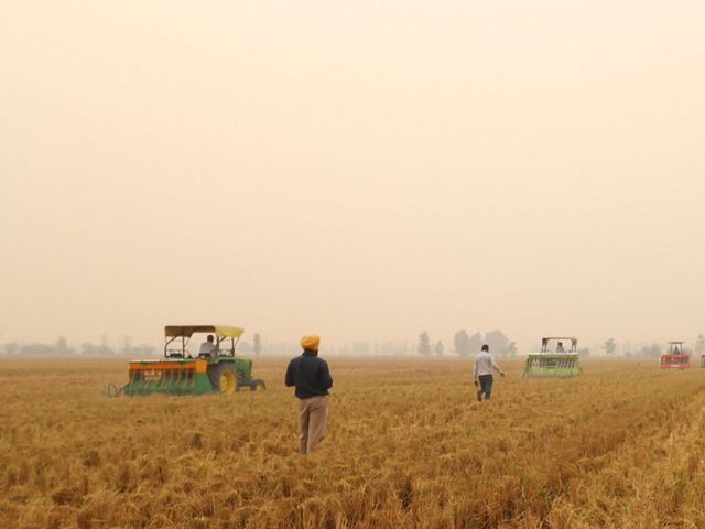 Farmers walk along crops while the sky is blanketed by opaque smog.