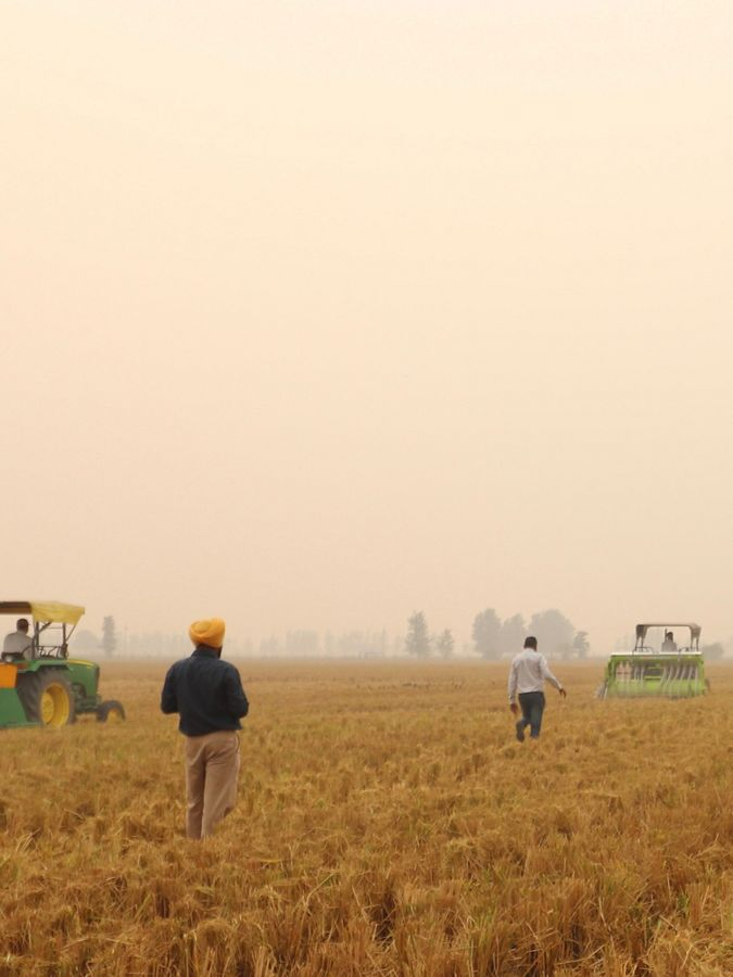 Farmer standing in the middle of field