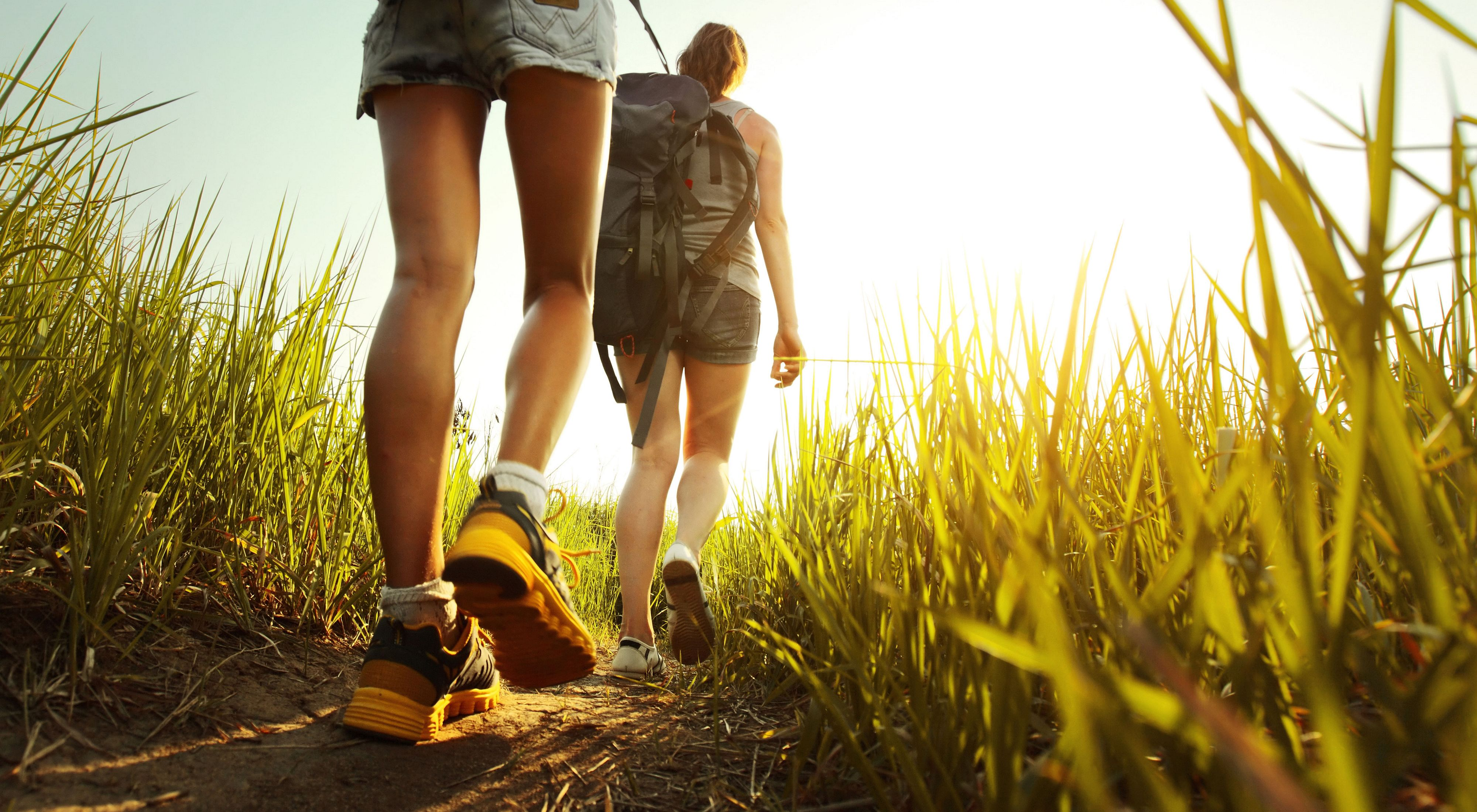 Two hikers on a trail.