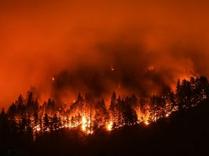 California's wildfire future