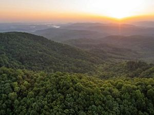 The sun rises over the Cumberland Mountains illuminating a wide green expanse of thick forest.