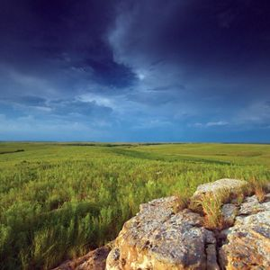 Central Great Plains Grasslands