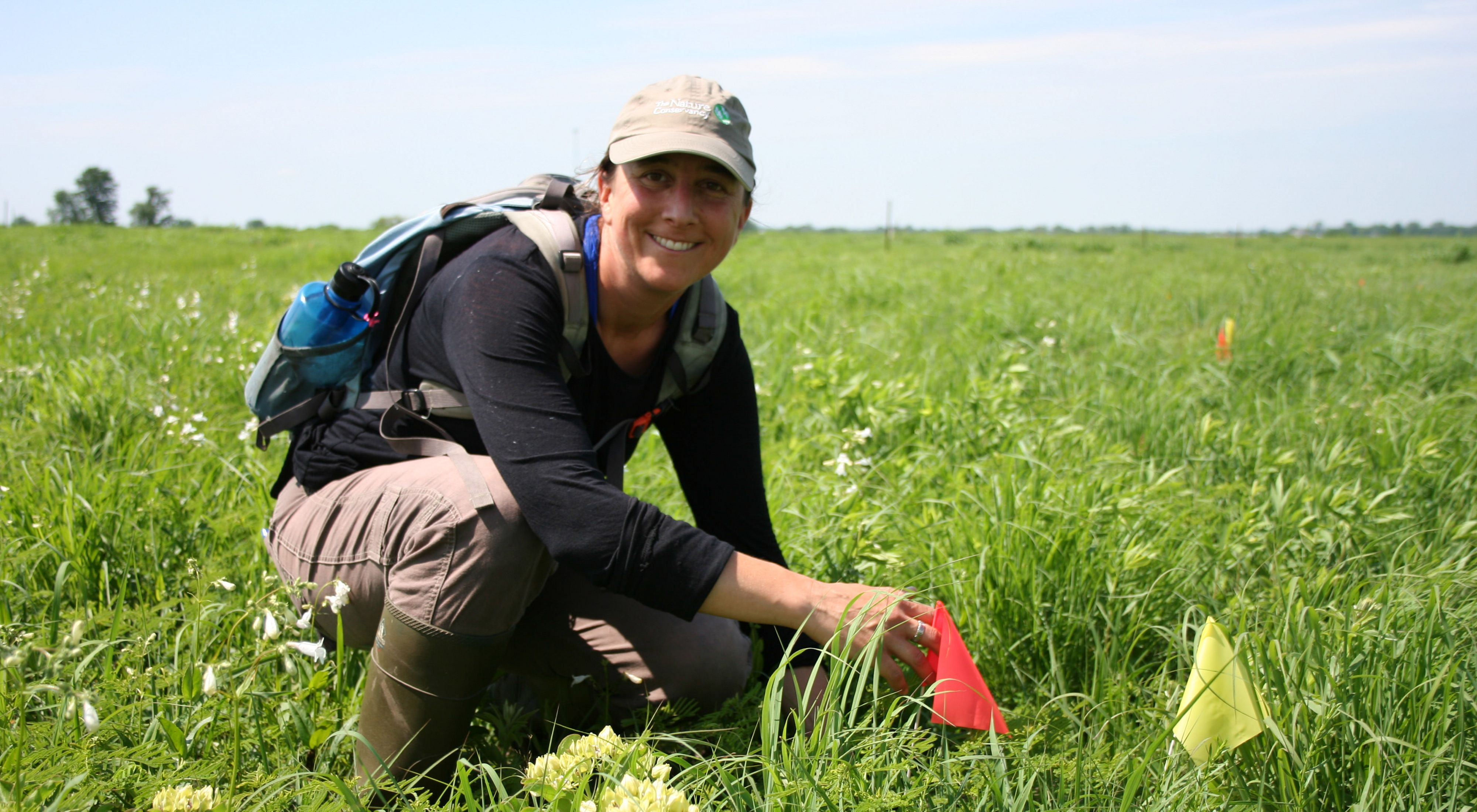 The University of Kansas doctoral student checks the condition of plants placed at Anderson County Prairies.