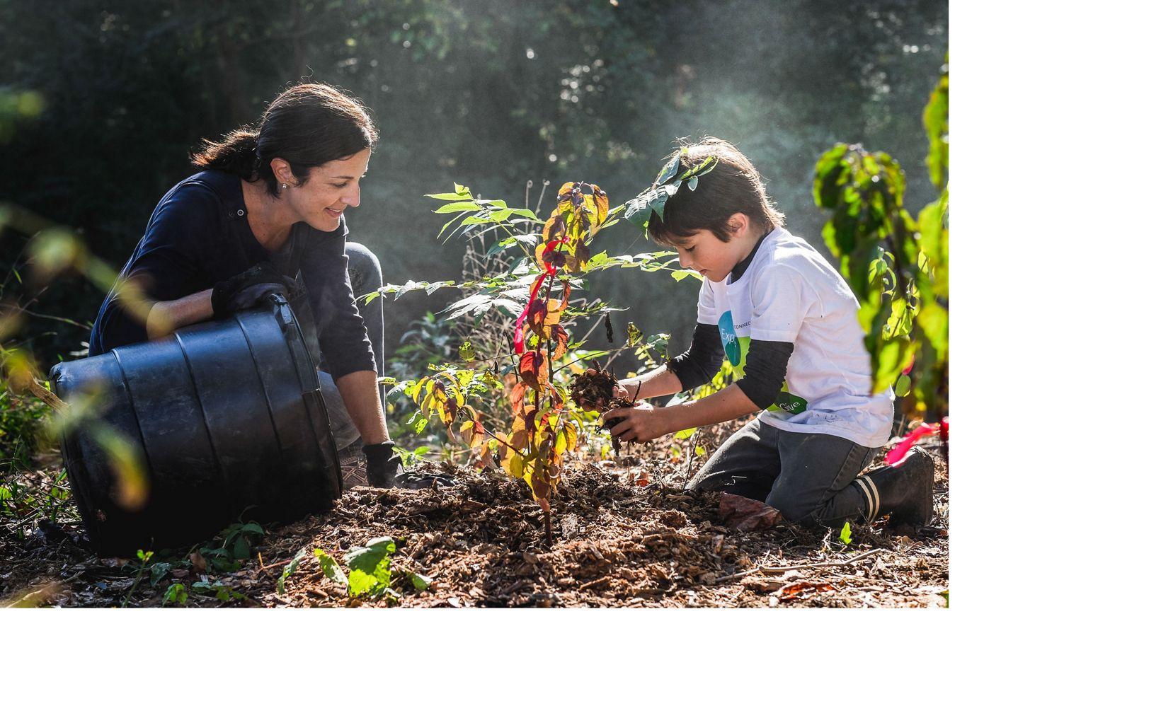 Volunteers planting trees in Atlanta.