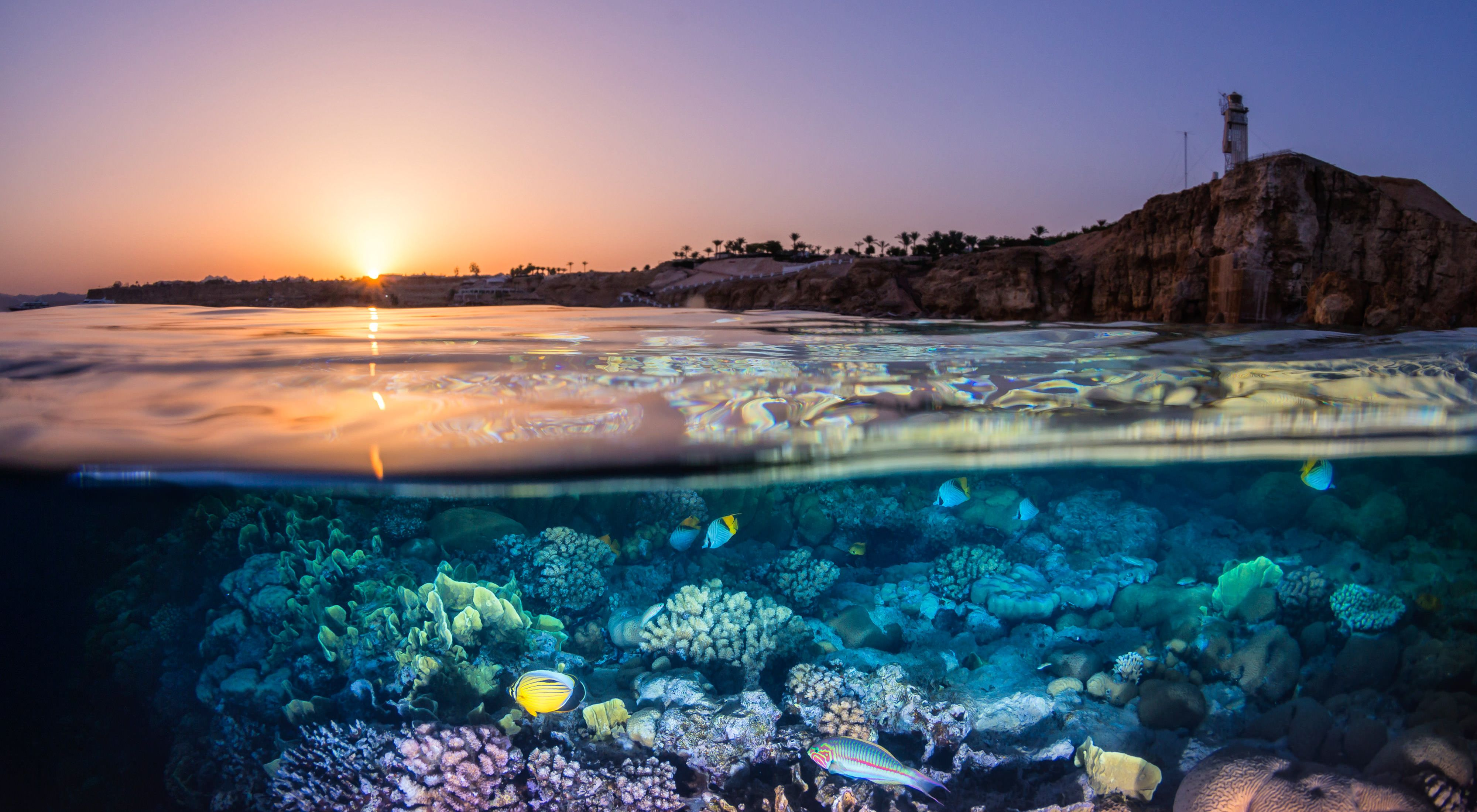 View of sunset and coral reef in Egypt.