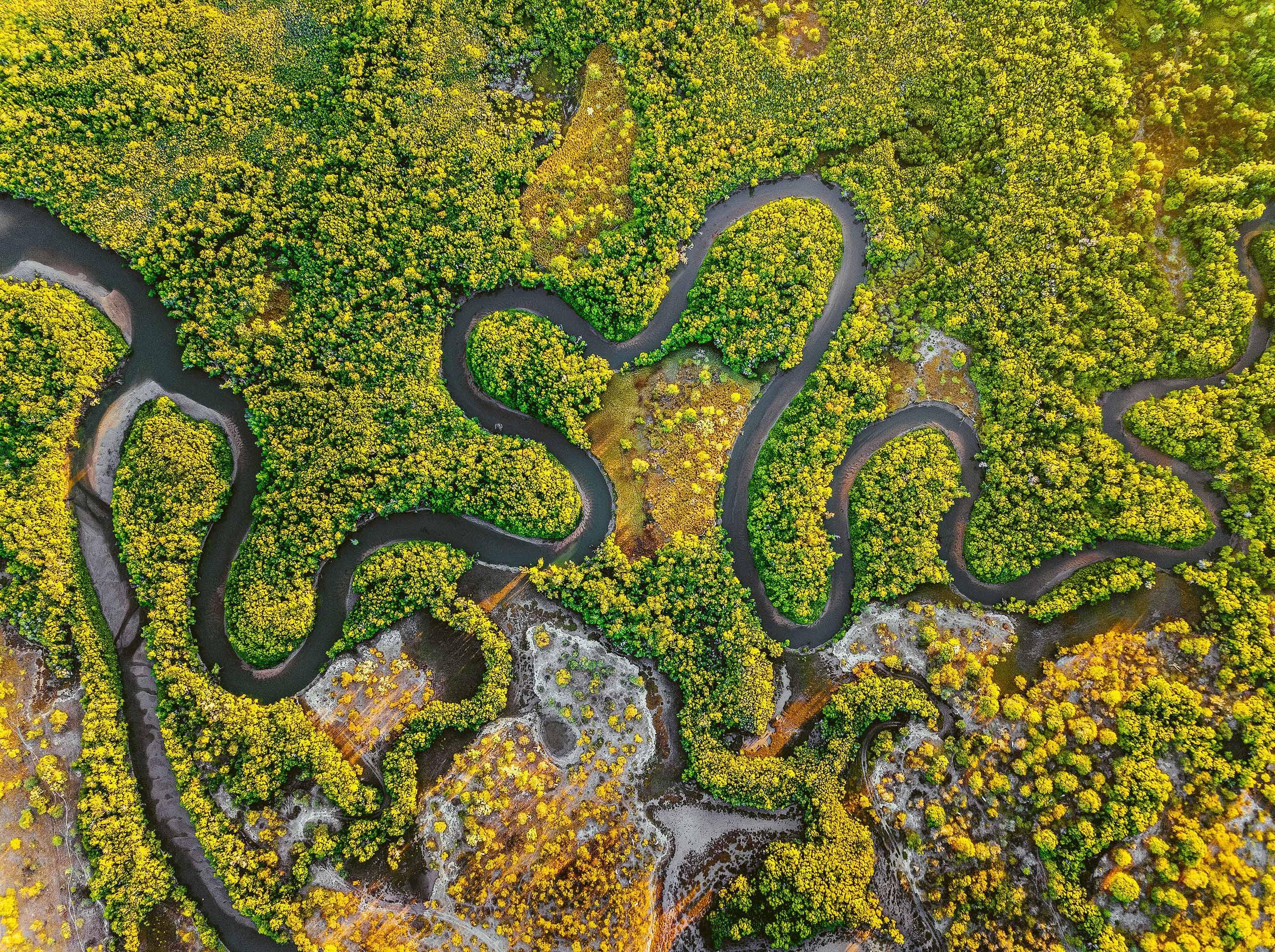 Alligator Creek, Queensland