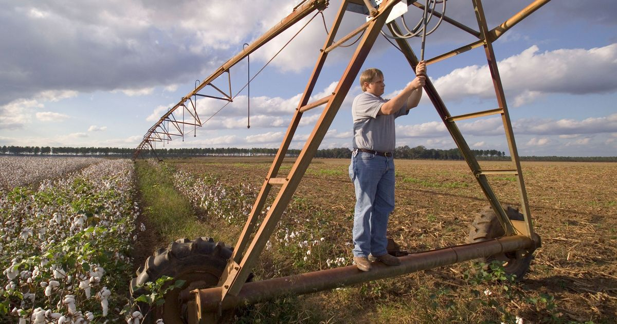 Graham Ginn, TNC Flint River Basin Program Director studies a pivot irrigation system which will be adapted to a variable rate system for the purpose of water conservation in a cotton field near Albany, Georgia.
