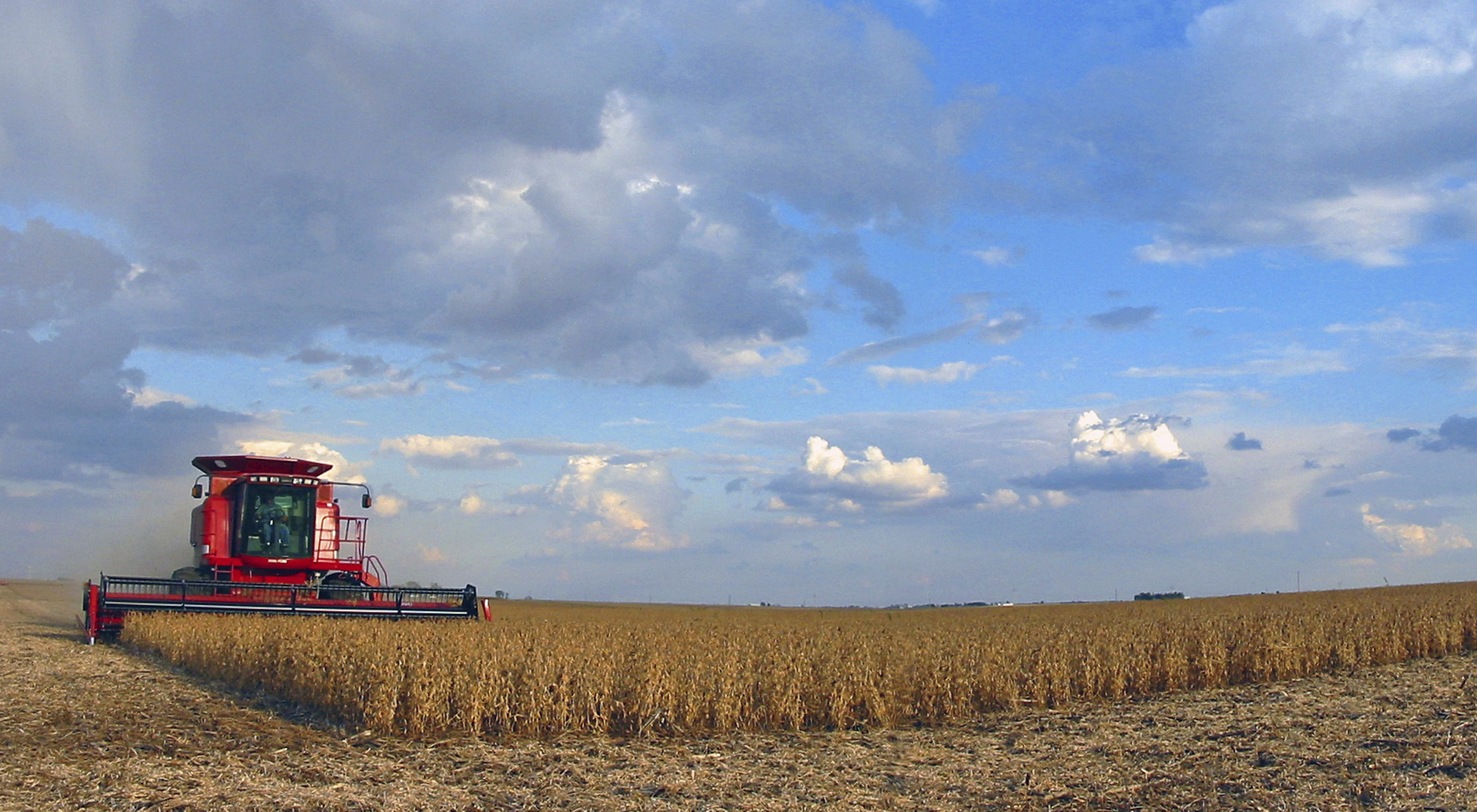 Photo of a combine harvesting wheat under a blue and cloudy sky.