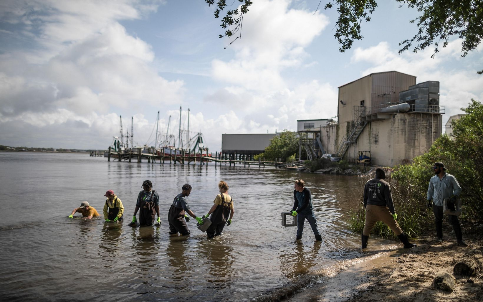 Members of the Conservation Corps create a living shoreline that will be come a home to oysters and other water creatures along the last natural shoreline in Biloxi along the southern Biloxi Bay, Mississippi. This project is also supported by The Nature Conservancy.