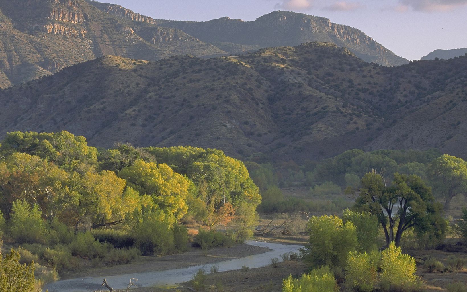 Fall colors along the Gila River with hills in the background.