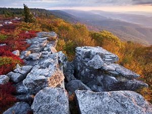 Fall color at The Nature Conservancy's Bear Rocks Preserve in West Virginia