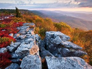 Fall color at The Nature Conservancy's Bear Rocks Preserve in West Virginia.