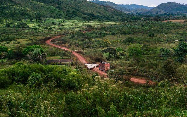 On the road to Farm Uniao in São Félix do Xingu in Pára, Brazil.
