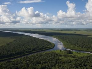 The Rio Curipí meets the Rio Uaçá in the Amazon.