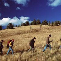 Hikers at Hart Prairie Preserve near Flagstaff, AZ