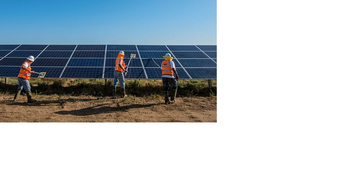Workers in orange vests clean solar panels outside in C
