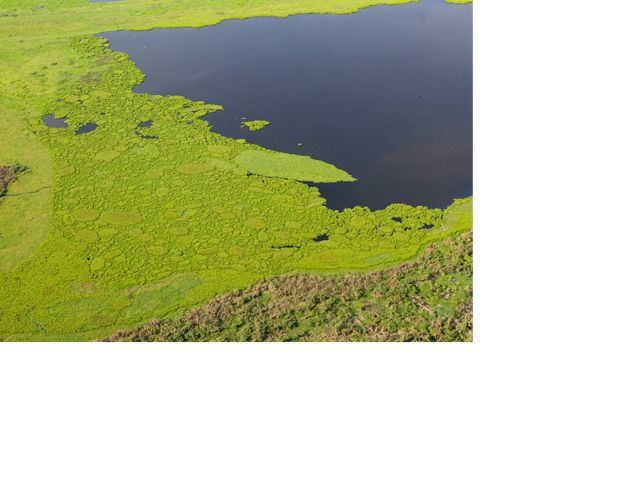 Aerial view of Marshland of Jaraba near the town of Santa Ana in Magdalena