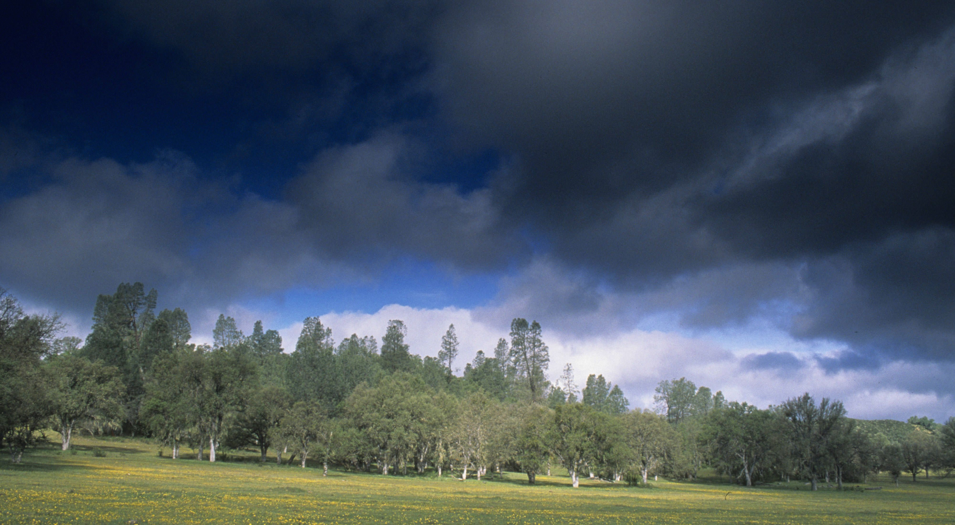 Stormy skies and rolling oak woodlands in the Mount Hamilton wilderness area.