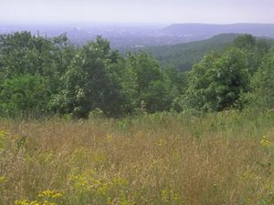 High Mountain Park Preserve