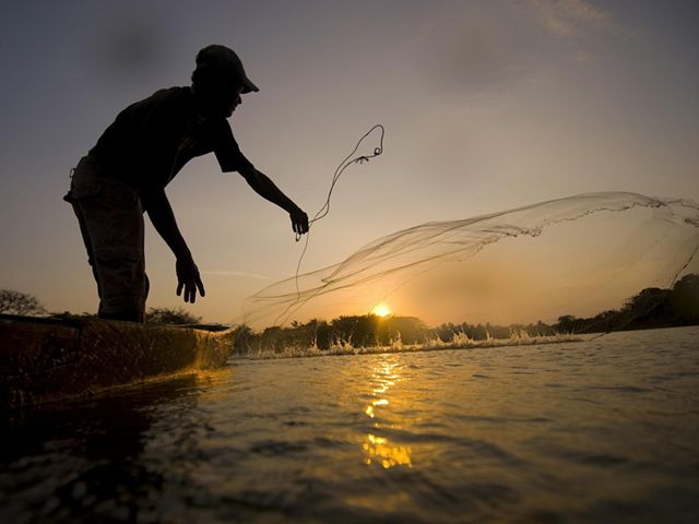 Local fishermen casting nets for fish in Colombia's lower Magdalena River basin.