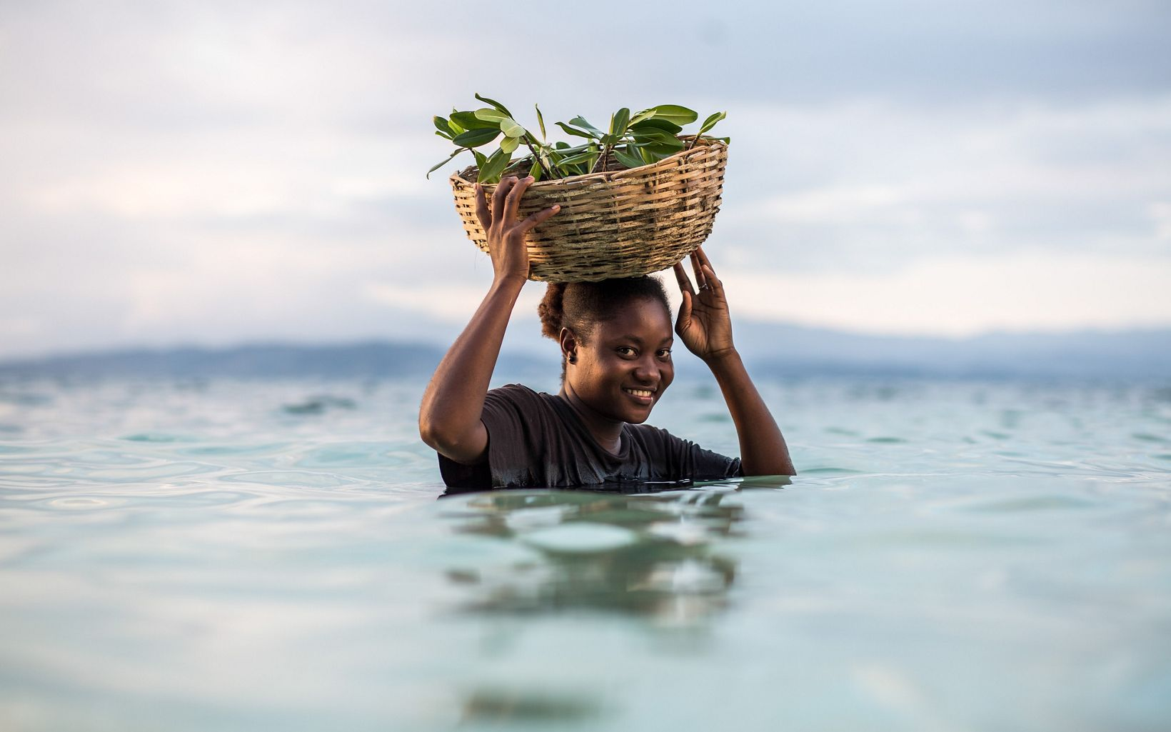 a woman stands in chest-deep water with a basket of mangrove seedlings on her head
