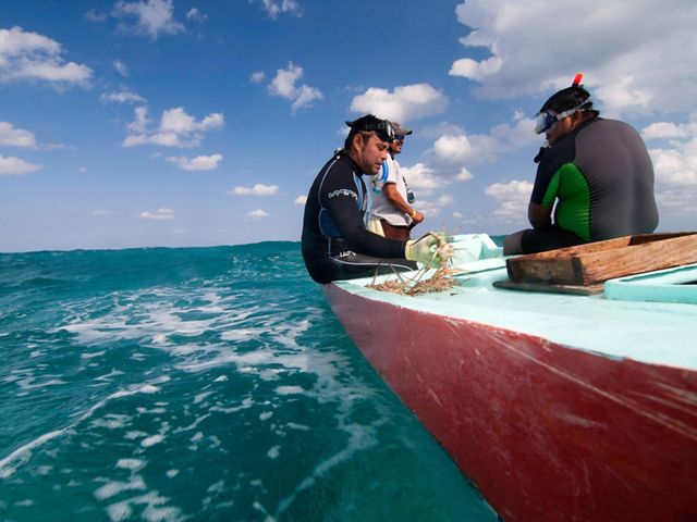 Lobster fishermen collect live lobsters in Ascencion Bay off the coast of the Sian Ka'an Biosphere Reserve in Quintana Roo, Mexico.