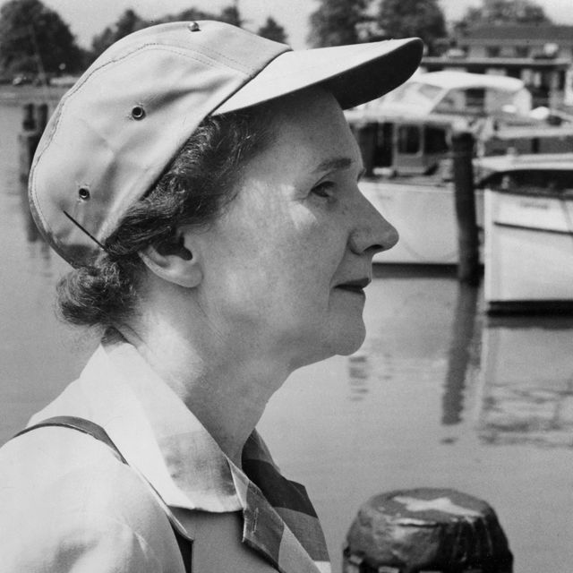 A profile view of Rachel Carson at a boating martina.