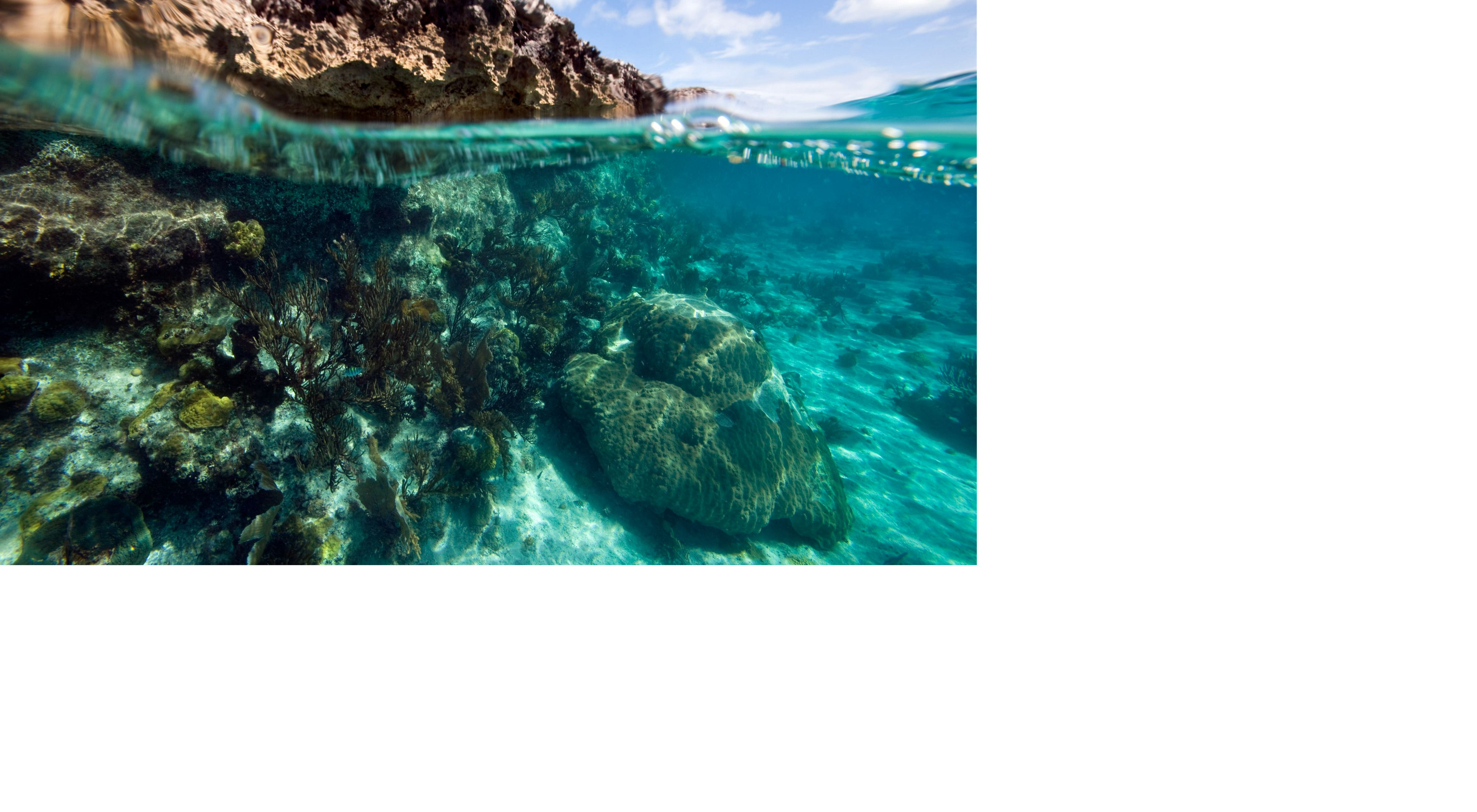 Shallow reef and limestone Islet in Exuma Cays Land and Sea Park, Bahamas.